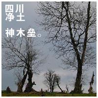 四川净土神木垒(组图)