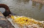江苏某工厂排污导致水污染