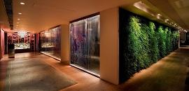 SEVVA入口的走廊